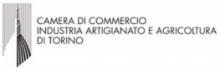 CamCom Torino